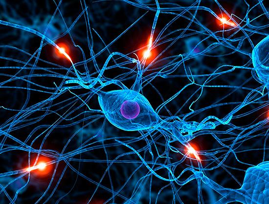 Причиной постгерпетической невралгии является разрушение миелиновой оболочки нервных клеток...